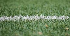 中国足协正式启动球探培训系统
